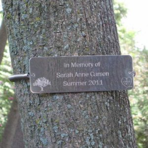 Tree Huggers® Tree Plaques - Personalized up to 5 LINES
