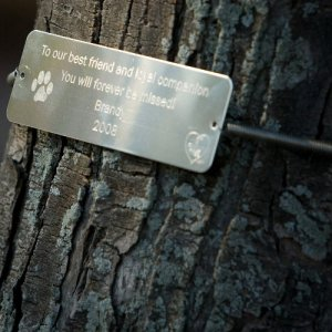 Tree Huggers 174 Tree Plaques Personalized Aft Thgr Pet