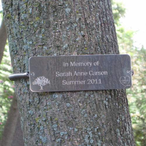 tree huggers tree memorial tree plaque memorial tree plaques markers
