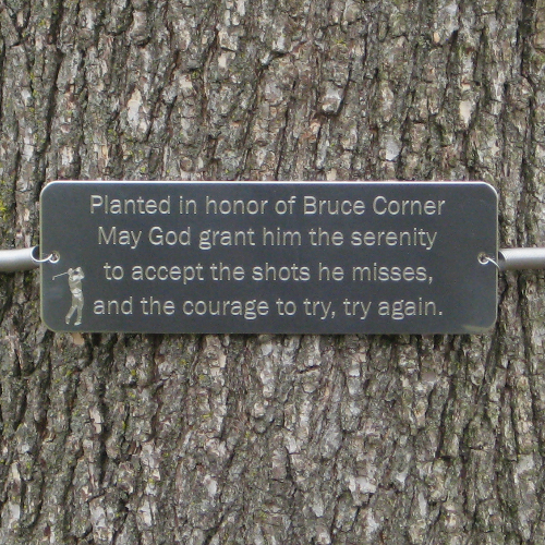 Fresh Tree Huggers | Tree Memorial Tree Plaque | Memorial Tree Plaques  UX25